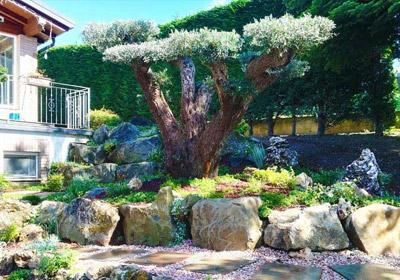 Arredo Giardino Bologna E Provincia.Creazione Giardino Creazione Giardini Bologna Creazione Giardini