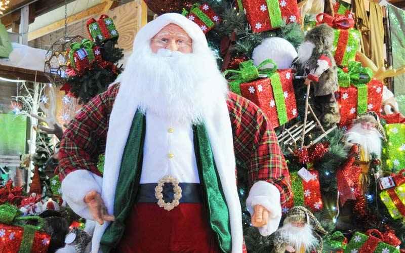 Dov E Babbo Natale.Babbo Natale Sinflora Babbo Natale Bologna