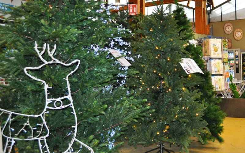 Incontri ornamenti di Natale
