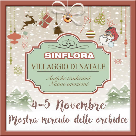 NATALE2017 BLOG e NEWSLETTER evento 1